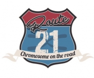 "#9314 per ""Route 21 Chromosome on the road"""